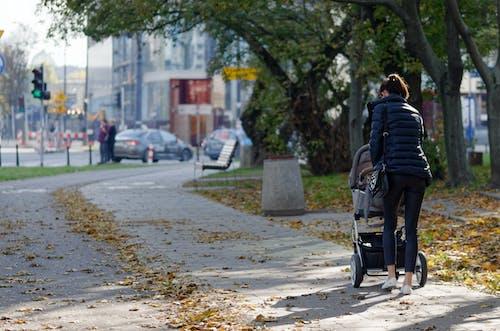 Foto profissional grátis de andando, árvores, automóveis, bebê