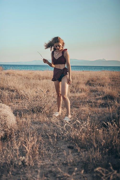 Základová fotografie zdarma na téma bikini, cestování, denní světlo, dovolená
