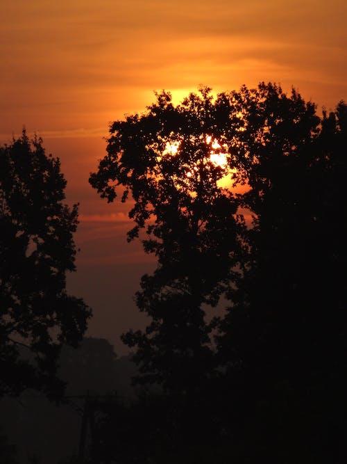 คลังภาพถ่ายฟรี ของ พระอาทิตย์ขึ้น