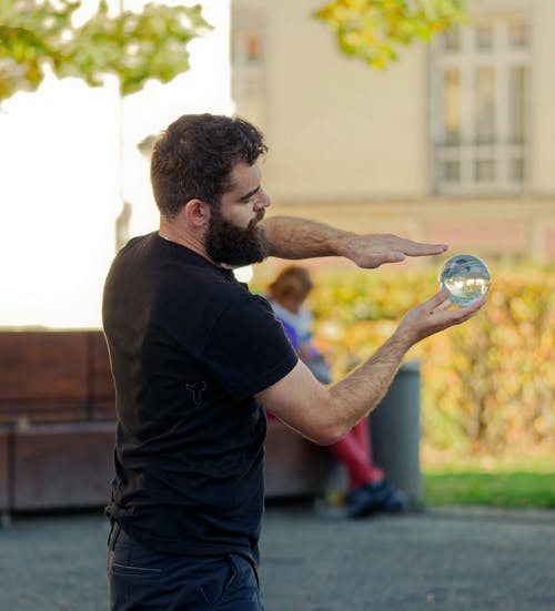 Foto profissional grátis de adestrado, agilidade, artístico, árvores