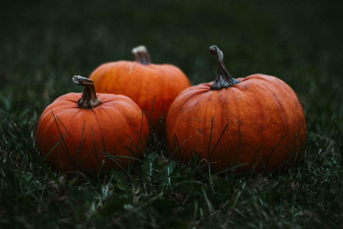 Up close photo of pumpkins