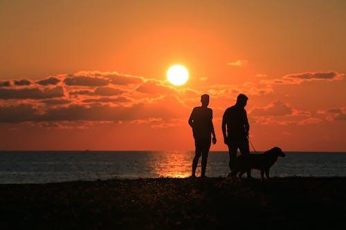 Безкоштовне стокове фото на тему «4к, Захід сонця, краєвид, модель»