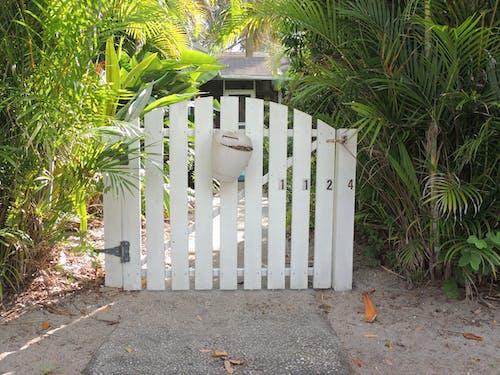 Ilmainen kuvapankkikuva tunnisteilla aita, este, portti, porttikäytävä