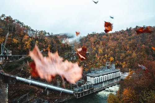 Free stock photo of dam, fall, fall colors, fog