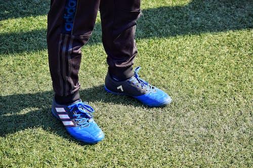 Gratis lagerfoto af blå, fodbold, fodboldbane, Sport
