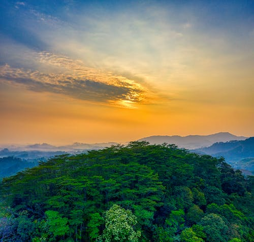 ağaçlar, akşam karanlığı, doğa, Endonezya içeren Ücretsiz stok fotoğraf