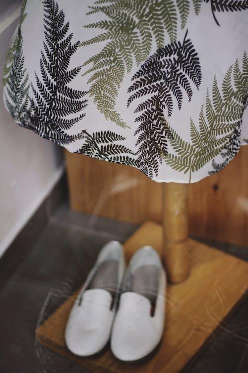 Kostnadsfri bild av blad, design, elegant, färg