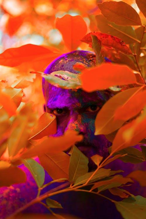 人, 拍照片, 樹葉, 照片會話 的 免费素材照片