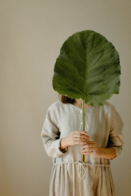 Person Holding a Big Leaf Covering His Face