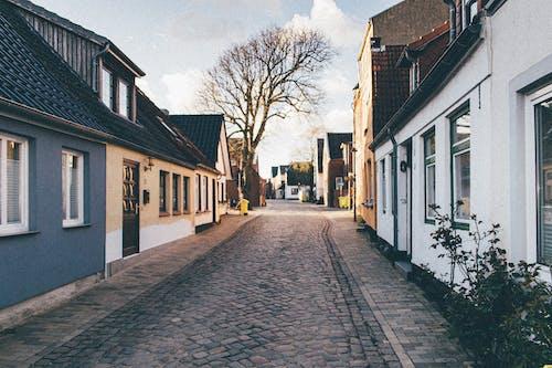住宅, 光禿禿的, 家, 小路 的 免費圖庫相片
