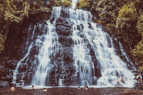 Бесплатное стоковое фото с вода, водопад, движение, дерево