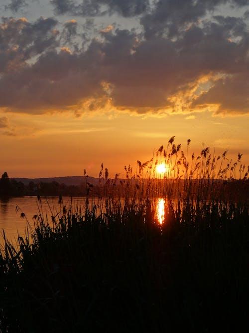 Základová fotografie zdarma na téma nádherný západ slunce