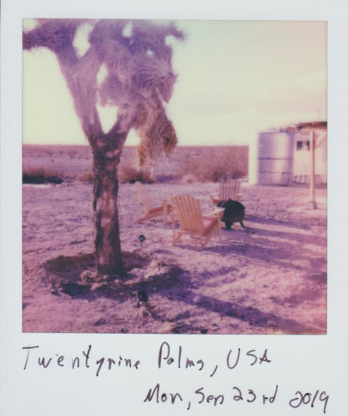 Photo Of Polaroid Picture