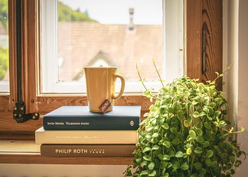 Free stock photo of wood, cup, mug, books