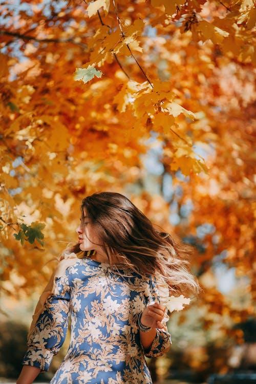 Foto profissional grátis de cabelo, cabelo ao vento, cor do outono, cores de outono