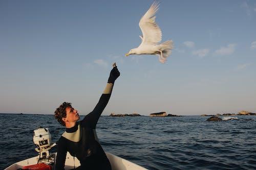 Man Feeding Flying White Bird