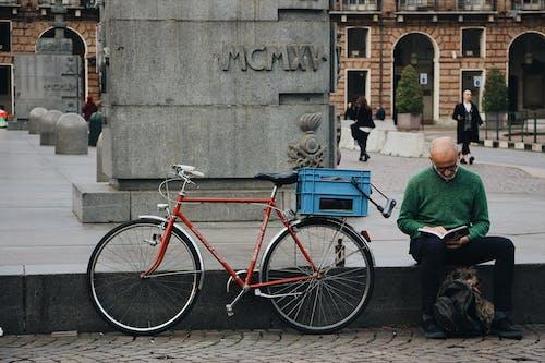 Imagine de stoc gratuită din animal de casă, arhitectură, bicicletă, biciclist