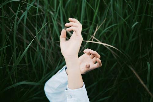 Základová fotografie zdarma na téma hřiště, ruce, tráva