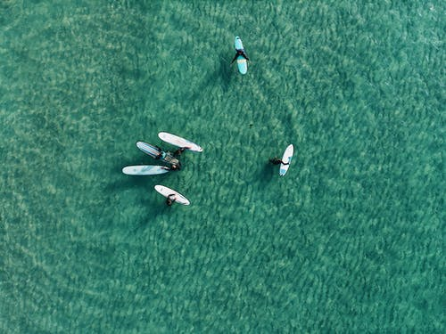Top View Photo of People on Surfboards