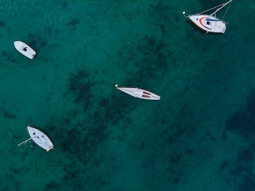 交通系統, 俯視圖, 帆船, 從上面 的 免費圖庫相片