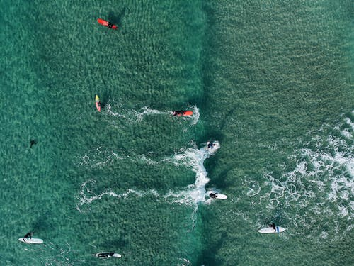 Top View Photo of People Surfboarding