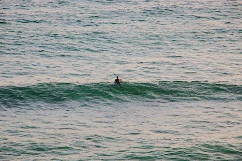 Foto stok gratis air, gelombang, laki-laki, laut