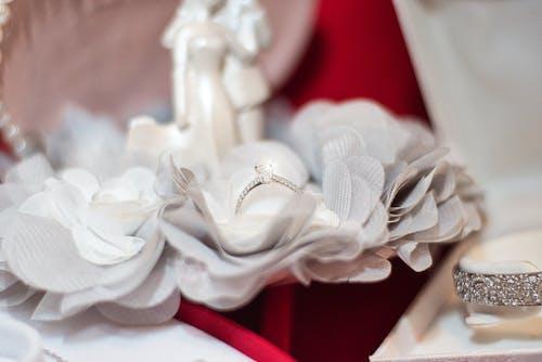 Foto profissional grátis de acontecimento, anel, argola