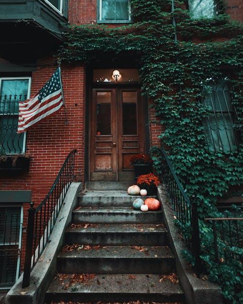 Free stock photo of autumn decoration, door, fall, foliage