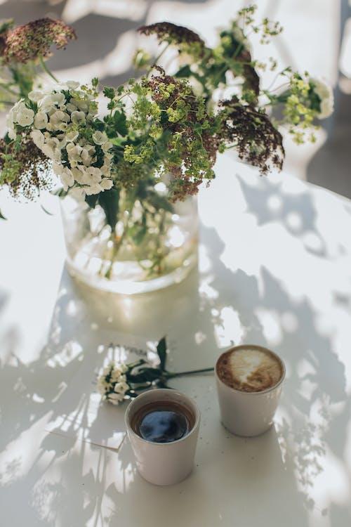 Gratis arkivbilde med blomster, cappuccino, delikat, drikke