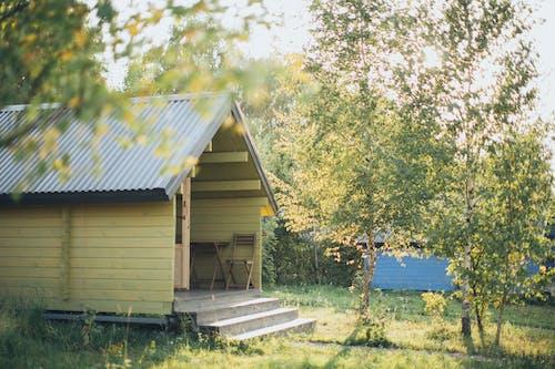 Photos gratuites de abri de jardin, arbre