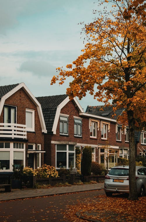 Orange Leafed Trees and Brown Houses