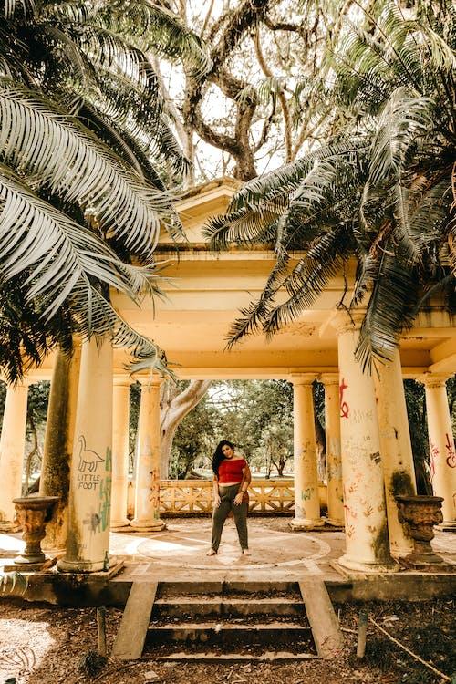 Gratis stockfoto met achtergelaten, architectuur, bomen, buiten