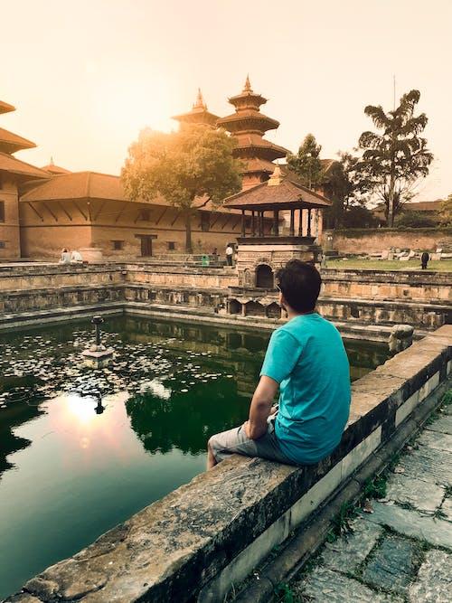 Free stock photo of evening sun, garden pond, nepal