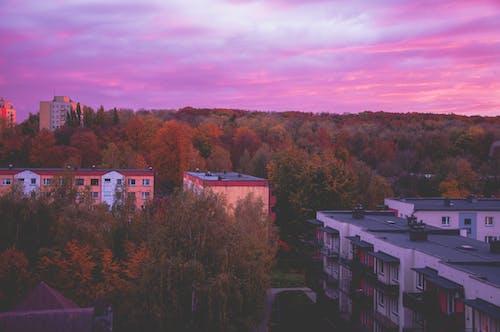 Photos gratuites de automne, beau ciel, ciel, ciel de la ville