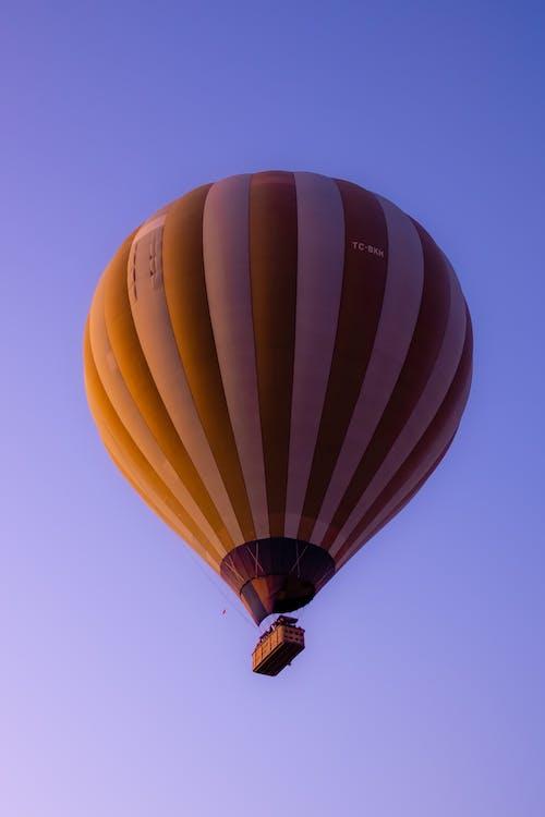 Blue and Yellow Hot Air Balloon
