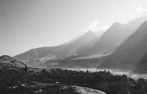 Imagine de stoc gratuită din alb-negru, arbori, călătorie, la țară
