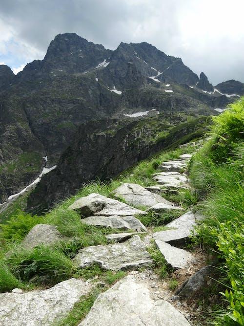 Základová fotografie zdarma na téma hory