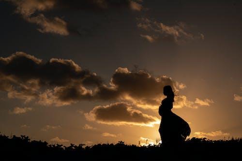 シルエット, ダーク, 夕暮れ, 夜明けの無料の写真素材