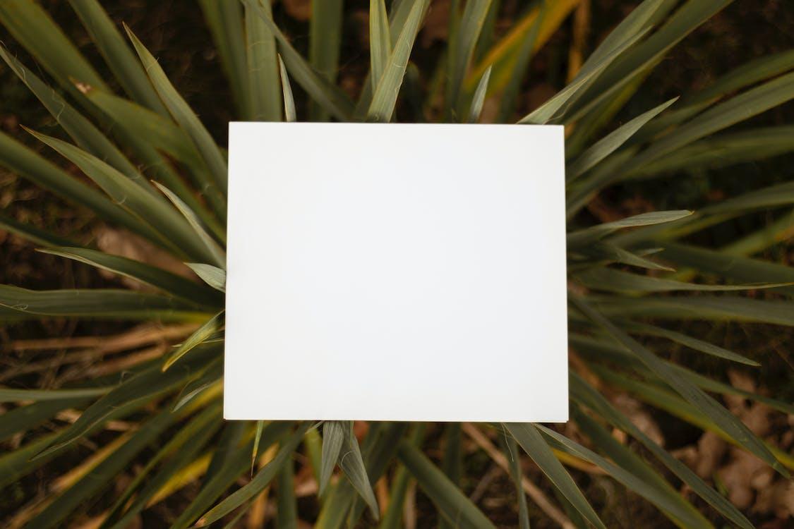 Square White Paper