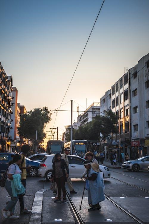 Gratis lagerfoto af afrikansk, almindelige mennesker, biler, efterår humør
