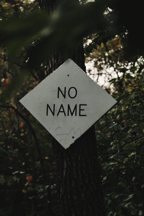 森林, 標誌, 樹, 樹葉 的 免费素材照片