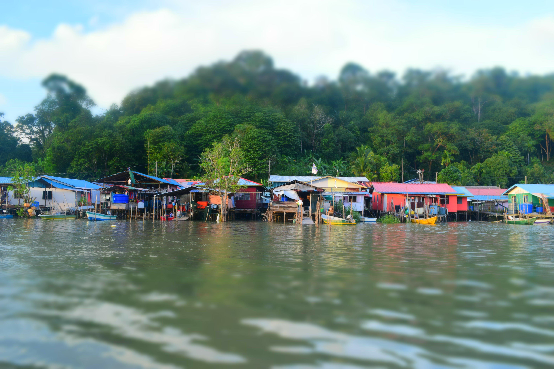 Free stock photo of borneo, huts, jungle, river