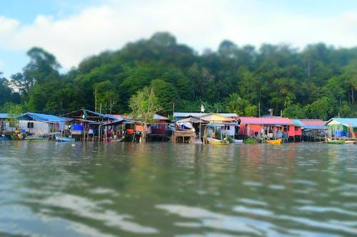 Darmowe zdjęcie z galerii z borneo, chaty, dżungla, morze