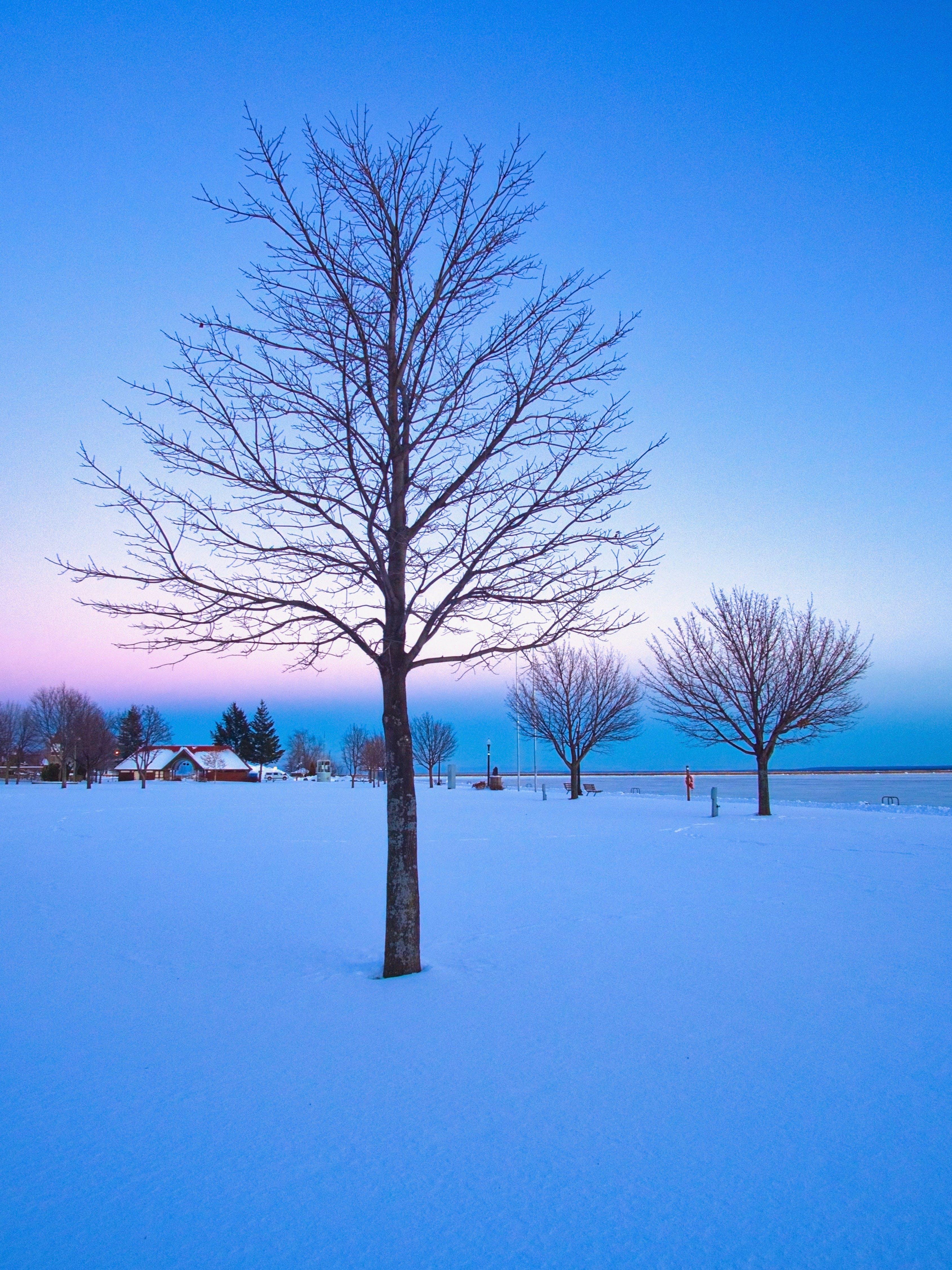 Free stock photo of cold, gradient, ice, sky