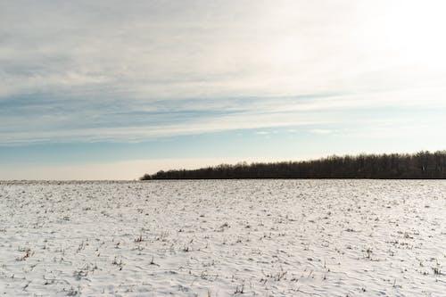 Darmowe zdjęcie z galerii z biały, błękitne niebo, chmura, chodzić