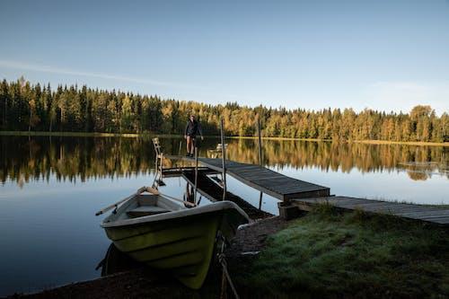 Foto d'estoc gratuïta de aigua, arbres, barca, callat