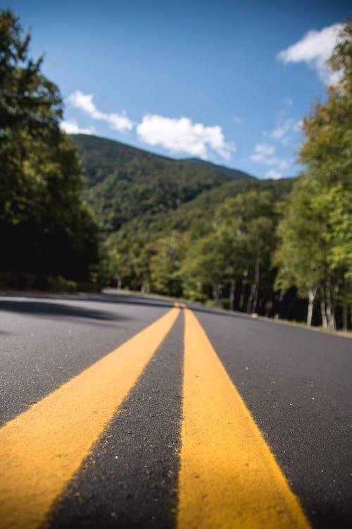 Foto d'estoc gratuïta de carretera escènica, carreteres, carreteres pintoresques, EUA