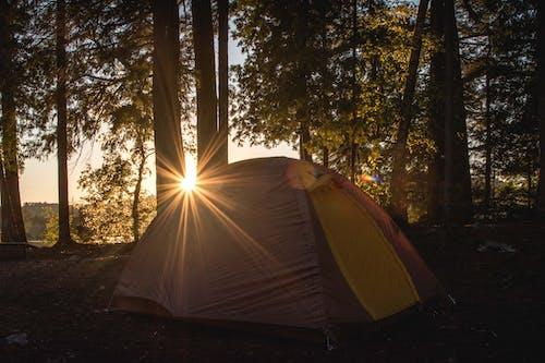 Foto d'estoc gratuïta de acampant, bonic capvespre, càmping, càmping a distància