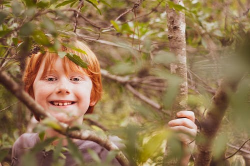 Free stock photo of boys, fall colors, foliage