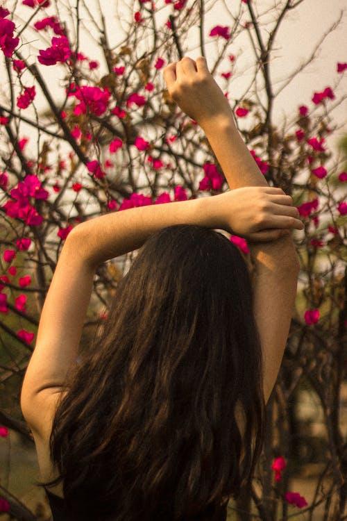 คลังภาพถ่ายฟรี ของ ช่วงแสงสีทอง, ภาพพอร์ตเทรต, รักตัวเอง, ฤดูใบไม้ร่วง